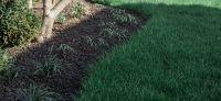 24_baufertigstellung_gartenplanung_gartengestaltung_bepflanzung_lavalit