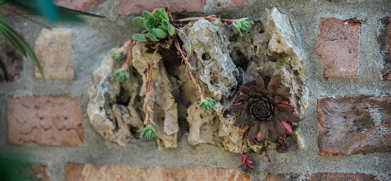 Naturstein: Mauern und Wege